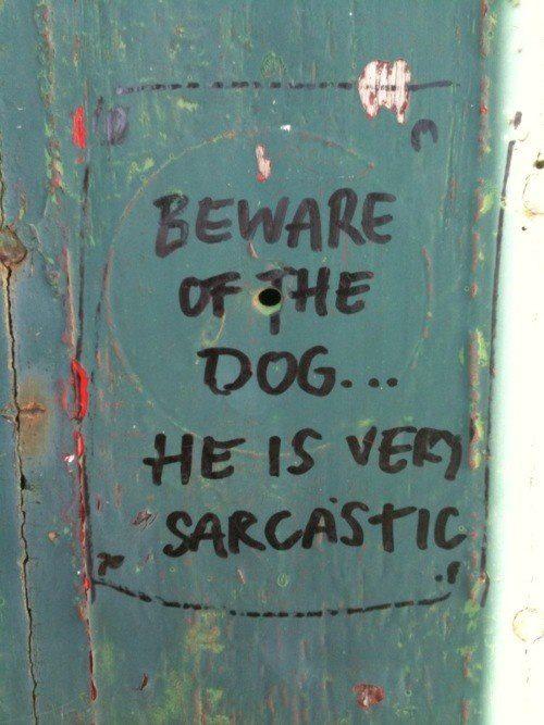 Beware of the dog.jpg